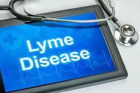 Ziekte van Lyme en magnesium. Lyme disease borrelia bacterie